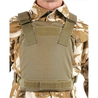 Blackhawk Low Vis Plate Carrier - Large