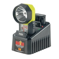 Pelican - 3750PL Big ED Photoluminescent Flashlight