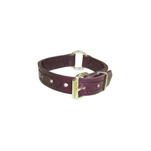 Boston Leather - Center Ring Dog Collar